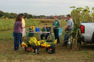 Anne and Jessica stand, looking at sunflowers, while Joseph, Taylor, Josie and Andy chat with them.